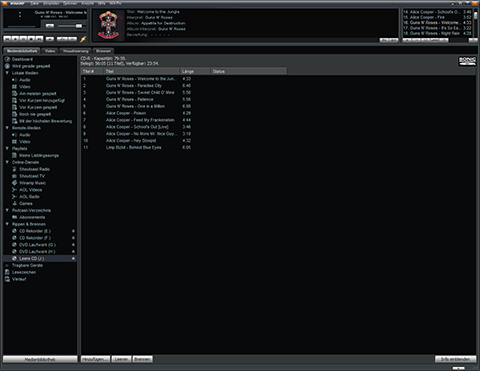 Winamp program window